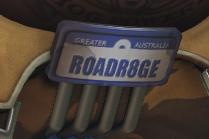 Overwatch Roadhog nod to Mad Max
